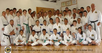 Regional Gashuku and Grading for Blue and Brown Belts